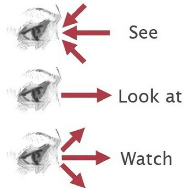 watch see look