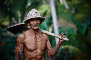 гены стройных людей -Текст на английском с переводом