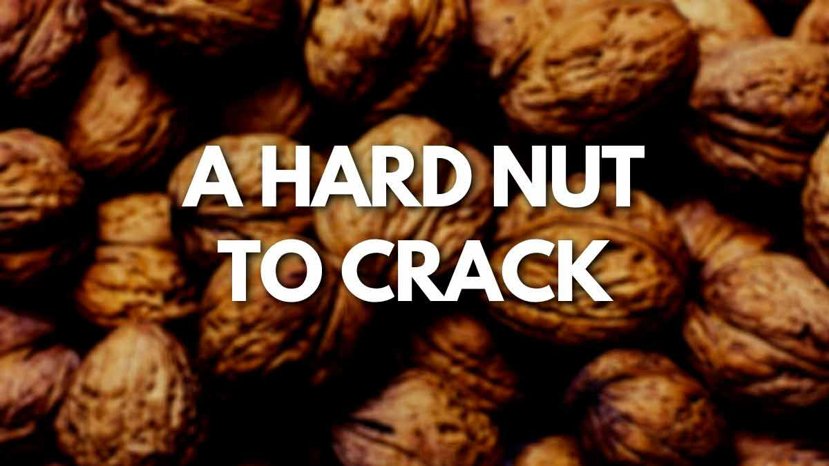 A hard nut to crack